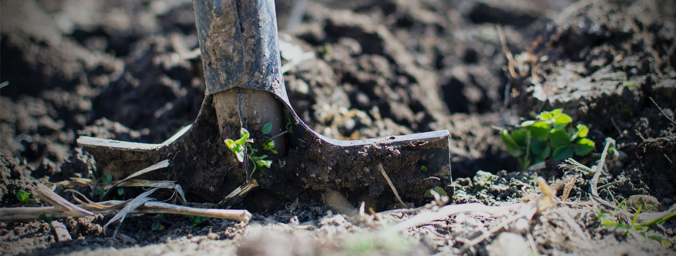 Strong, Durable Tools To Transform Your Garden